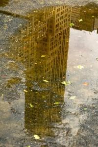 fond d'écran automne ville