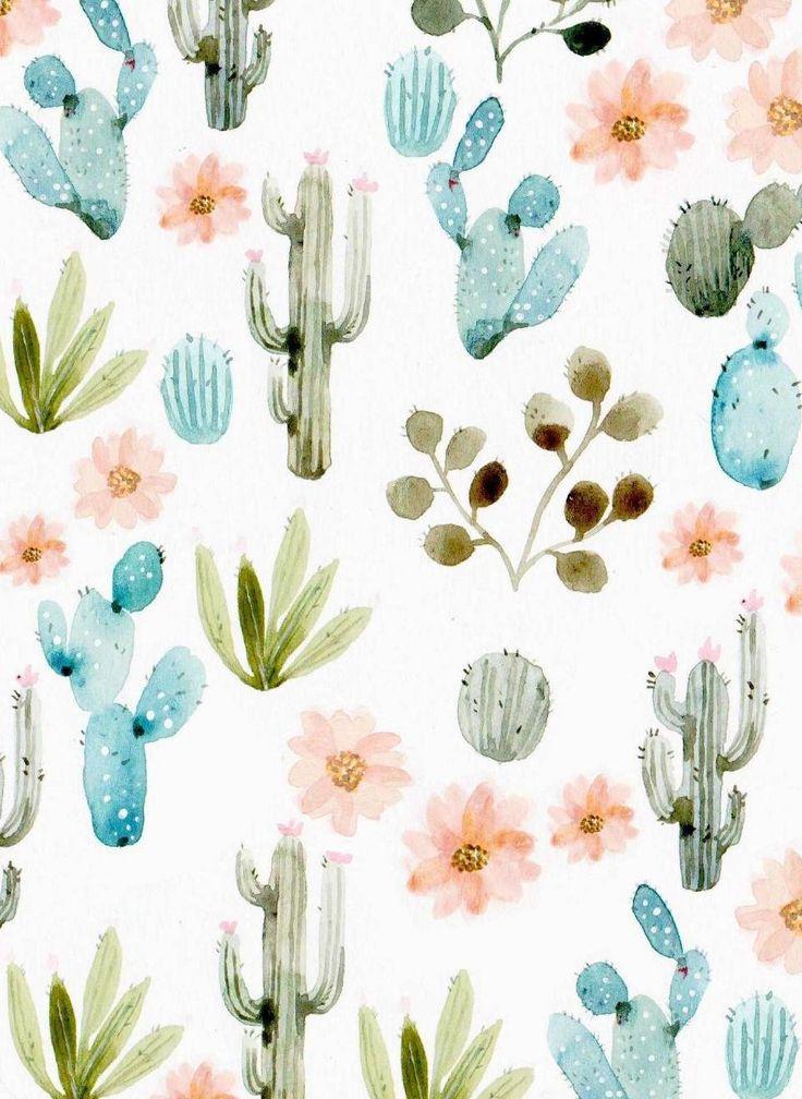 fond d'ecran cactus